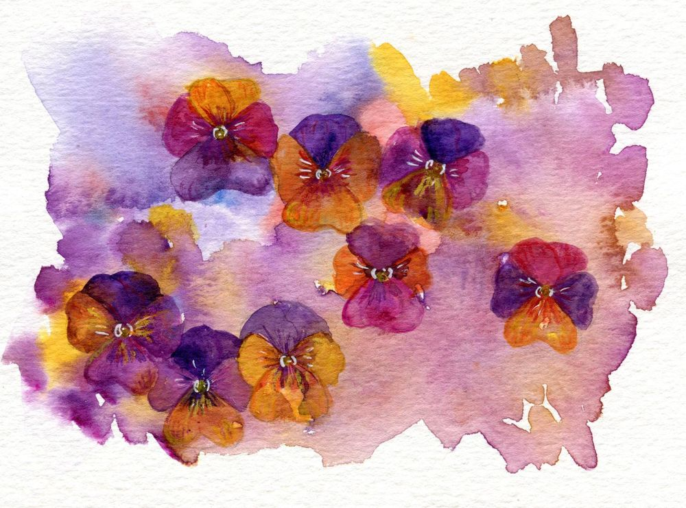 Colourful flowers - image 1 - student project