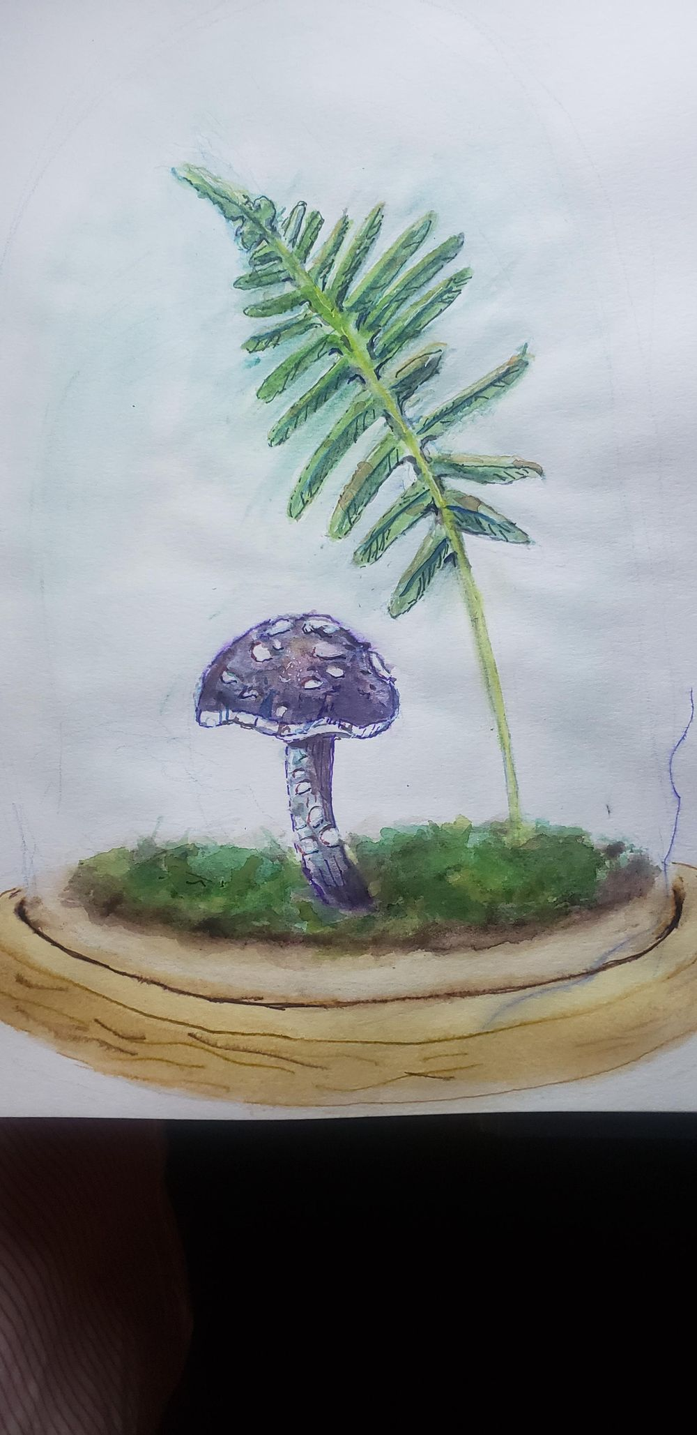 Mushroom & Fern - image 1 - student project