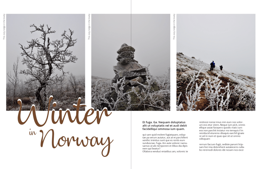 Mock magazine spreads - image 4 - student project