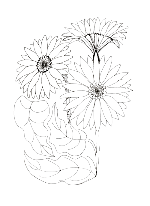 Gerbera and Black-eyed Susan vines - image 2 - student project