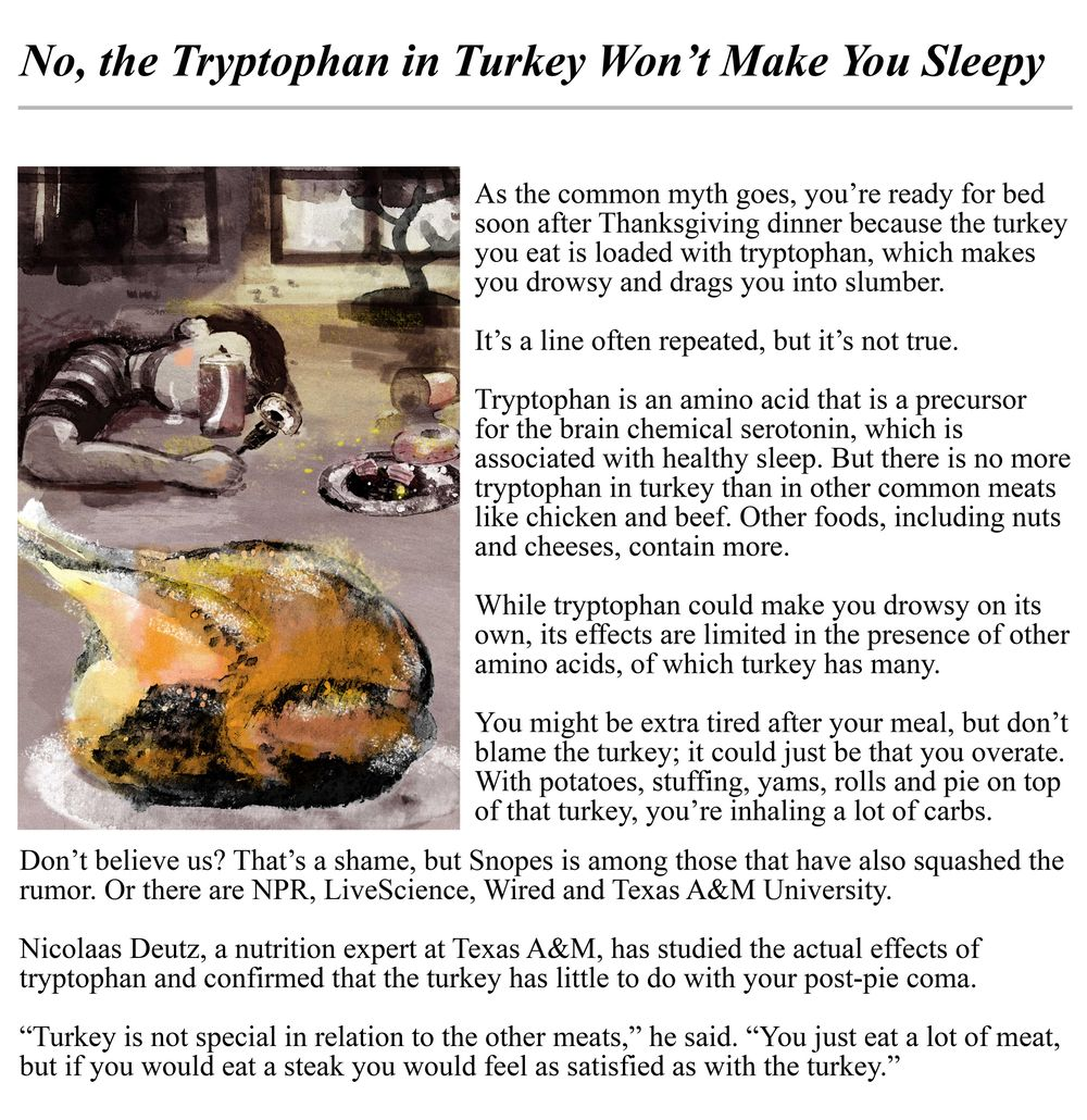 Turkey Article - image 1 - student project