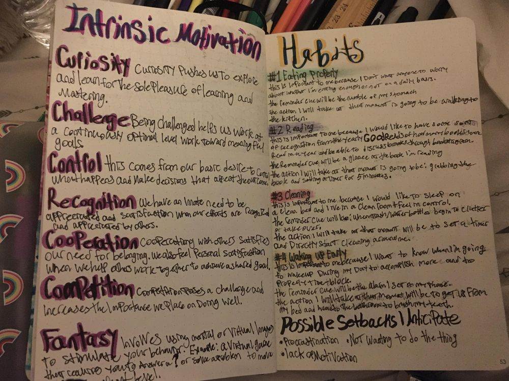 Habit Tracker/Habit Formation Journal Pages Class Project - image 1 - student project