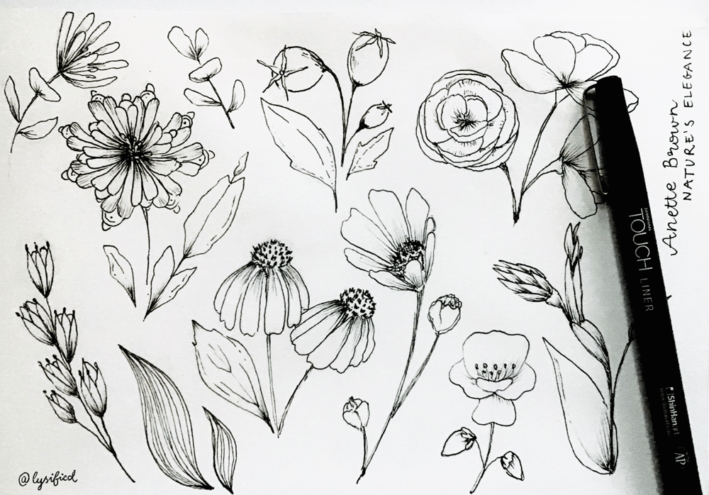 Flower study with Anette - image 2 - student project