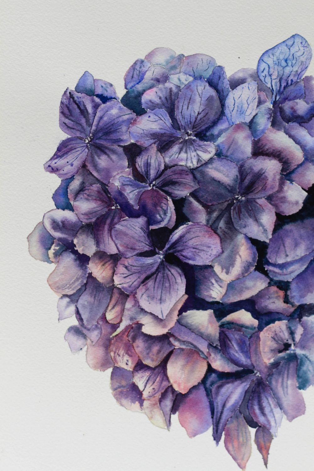 Finished Hydrangea - image 1 - student project