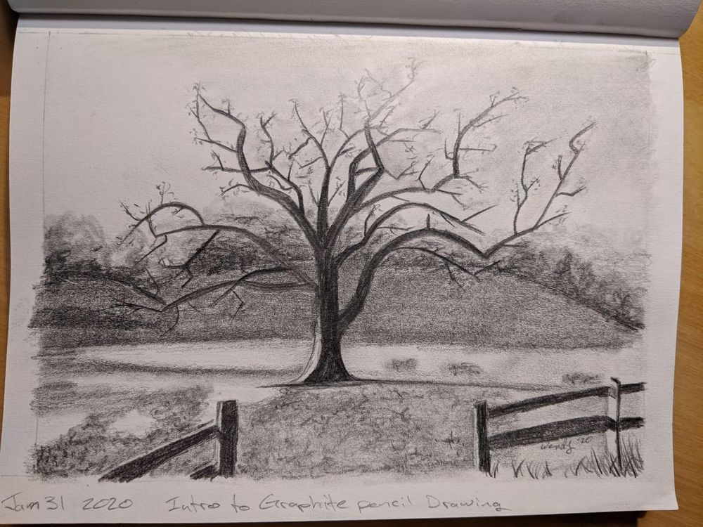 Intro to Graphite Pencil Drawing - image 1 - student project