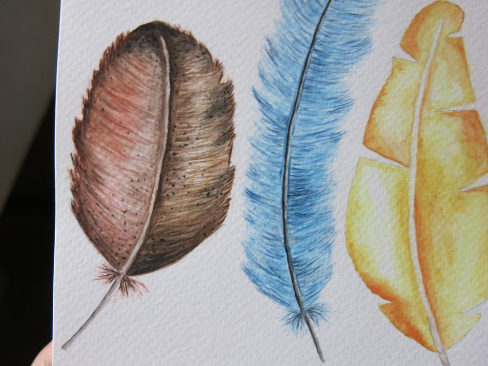 Feathers:D - image 2 - student project