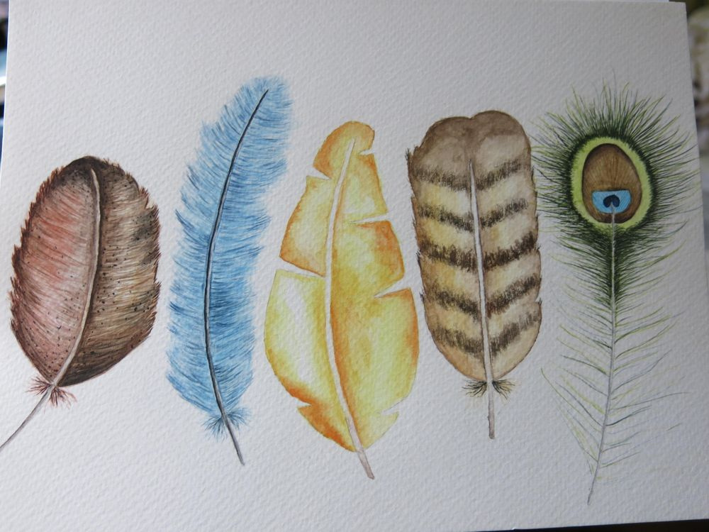 Feathers:D - image 1 - student project