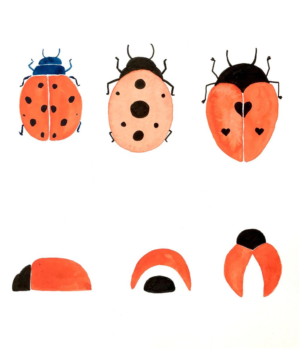 Flies and Bees and Bugs, oh my! - image 2 - student project
