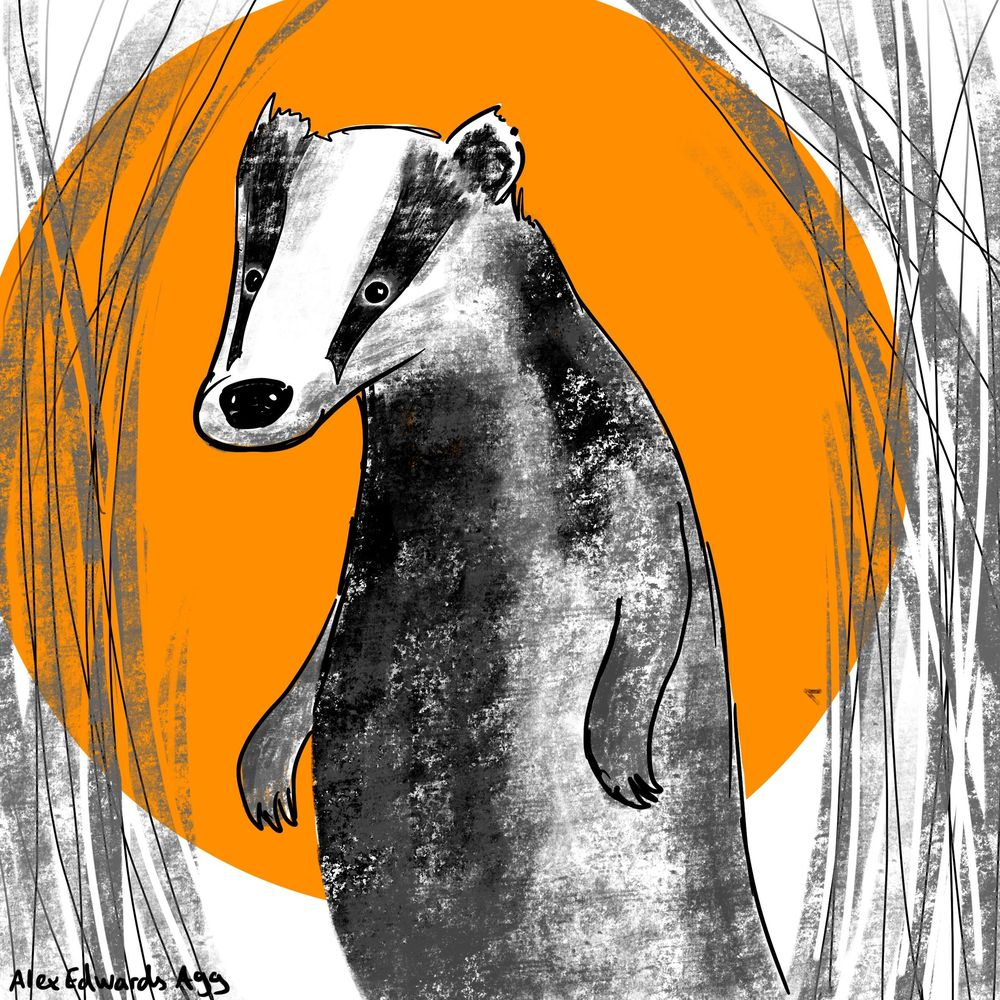 Badger Illustration for Procreate tips class - image 1 - student project