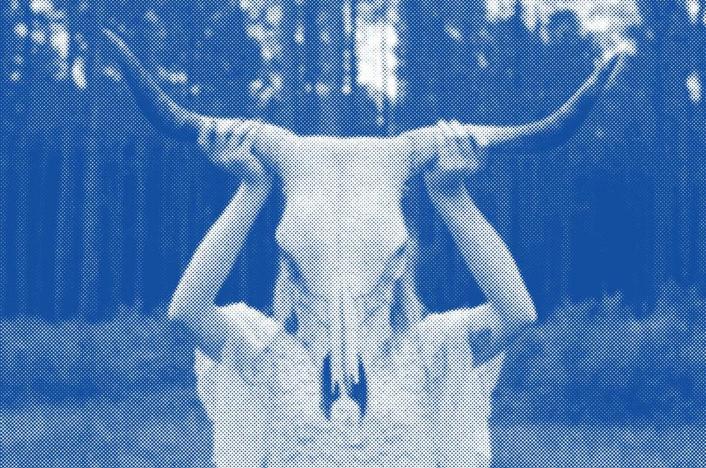 Girl with longhorn - image 1 - student project