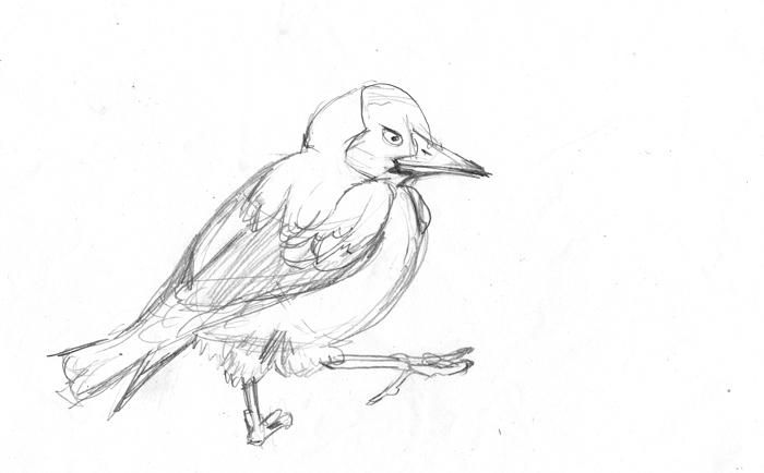 Magpies - image 2 - student project
