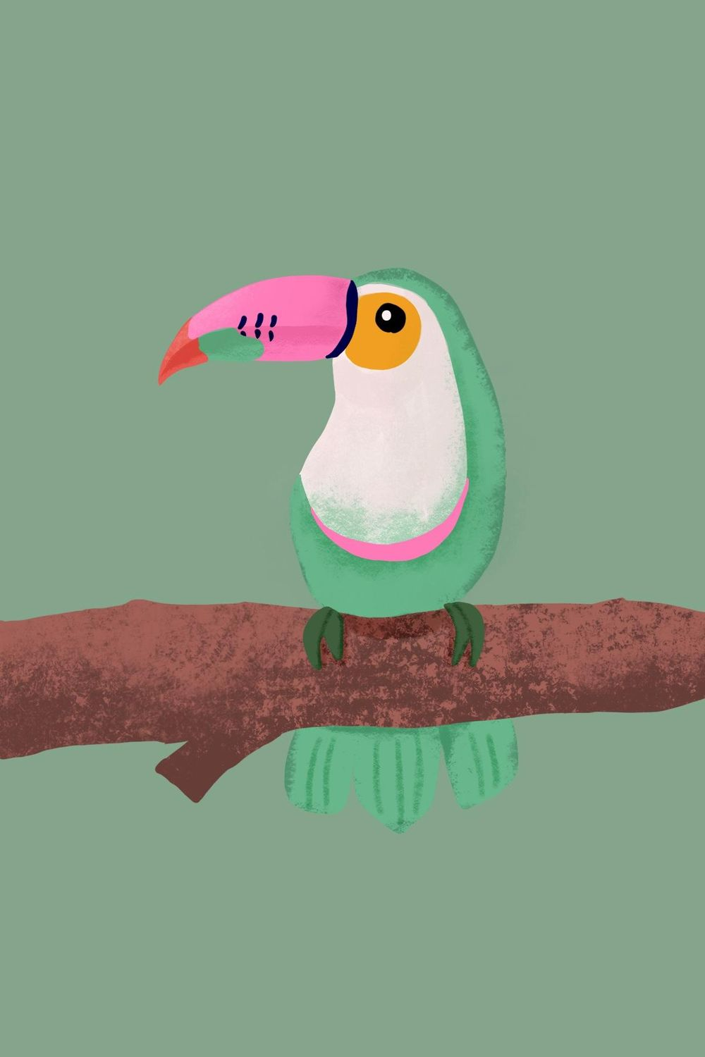 Pink Tucan - image 1 - student project