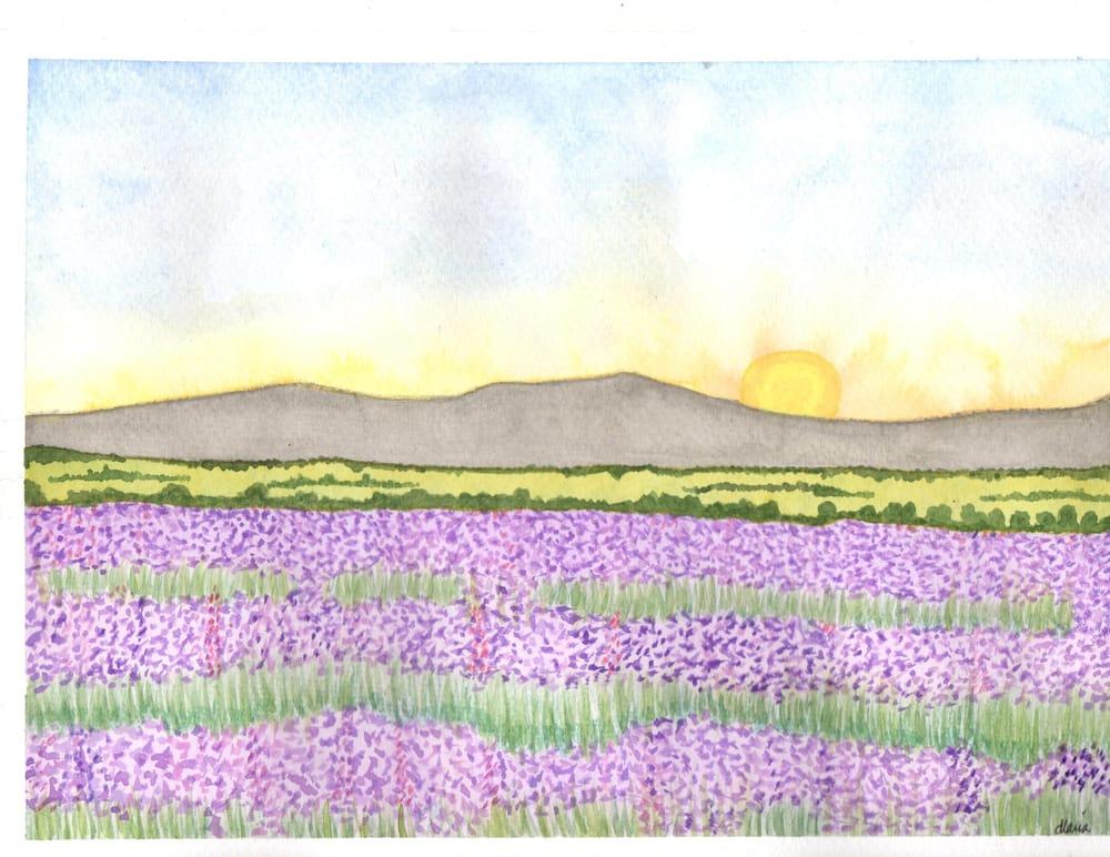 1st Landscape - image 1 - student project