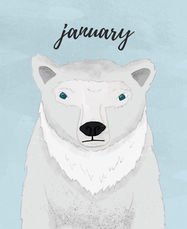 Polar Bear Illustration (I Wish It Was My Pet!) - image 4 - student project