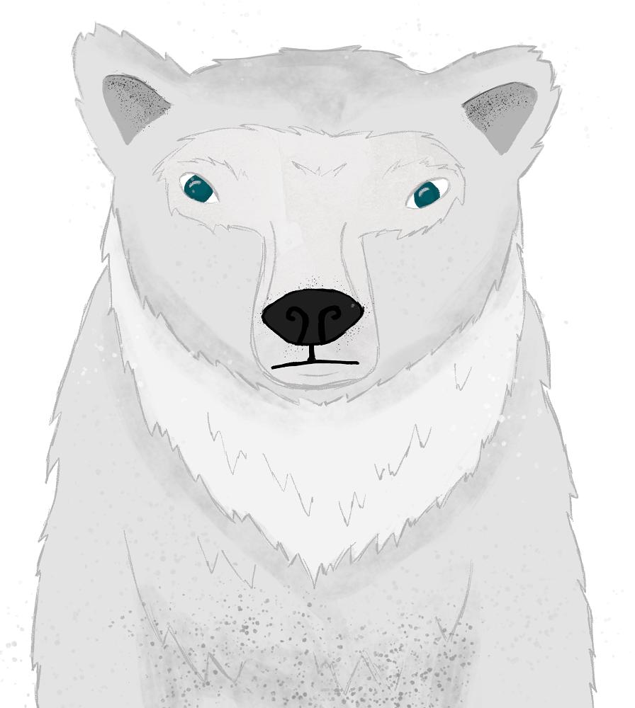 Polar Bear Illustration (I Wish It Was My Pet!) - image 3 - student project