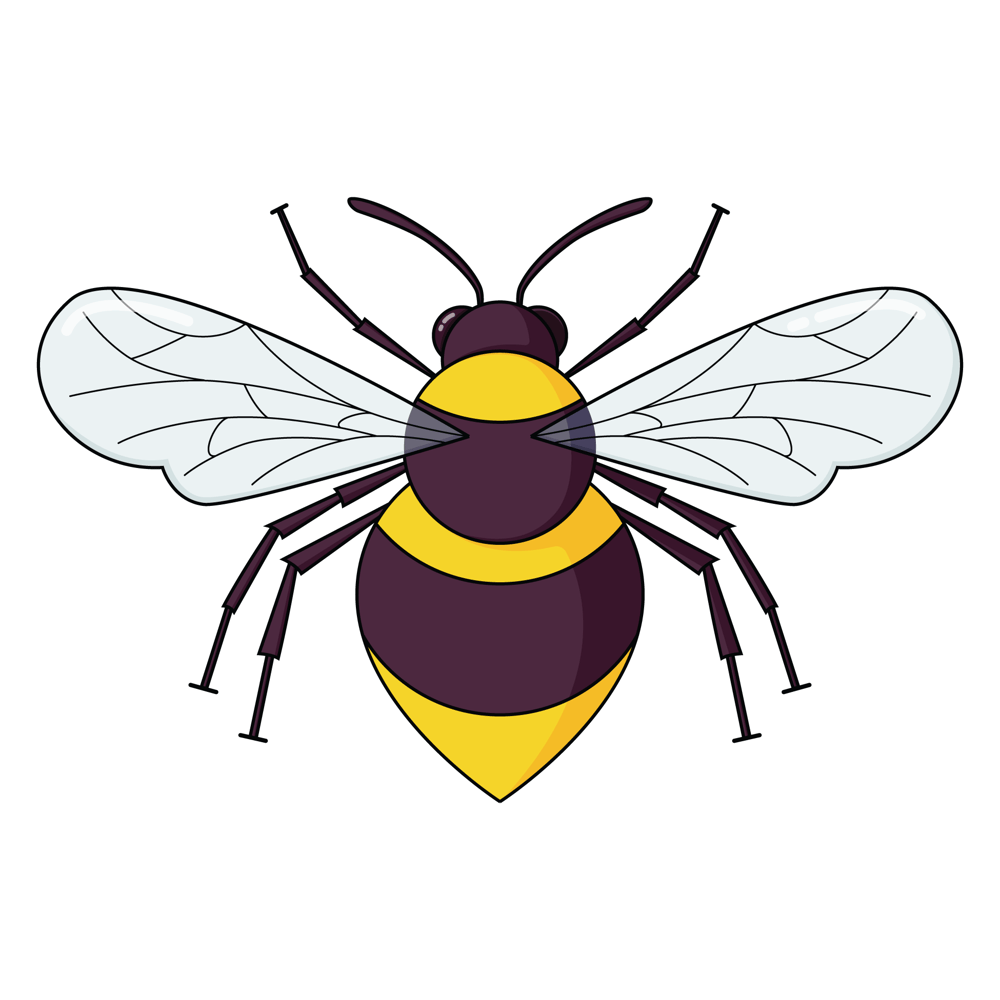 Bumblebee - image 4 - student project
