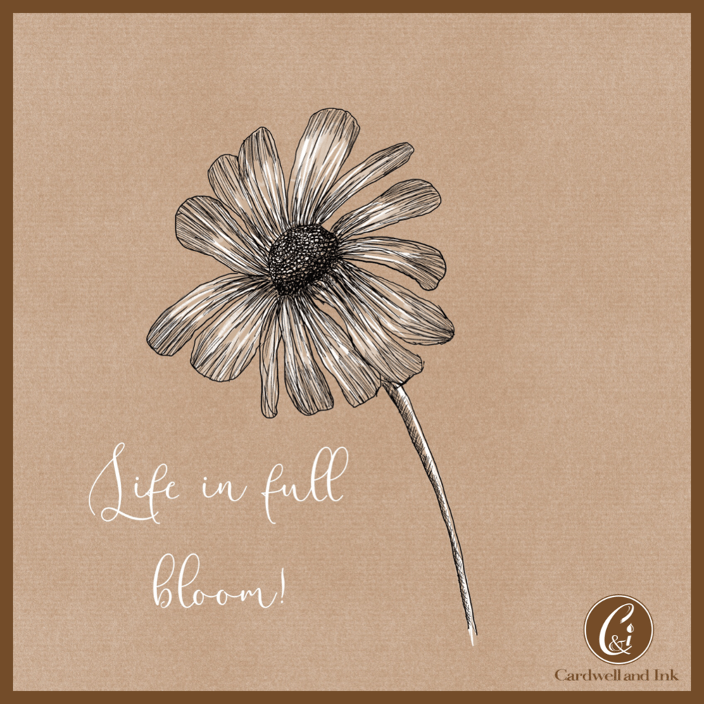Life in full bloom. - image 1 - student project