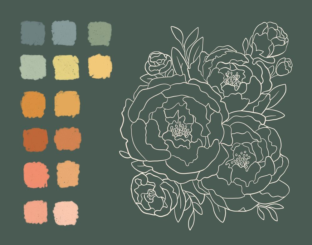 Illustrated Peonies - image 2 - student project