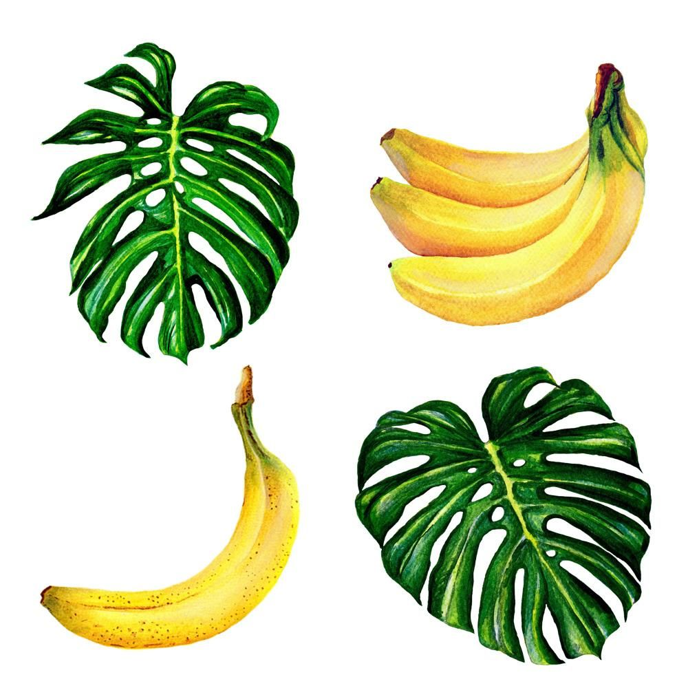 Monsteras and Bananas  - image 1 - student project