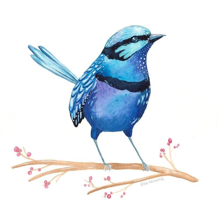 Whimsical Watercolour Birds - image 1 - student project