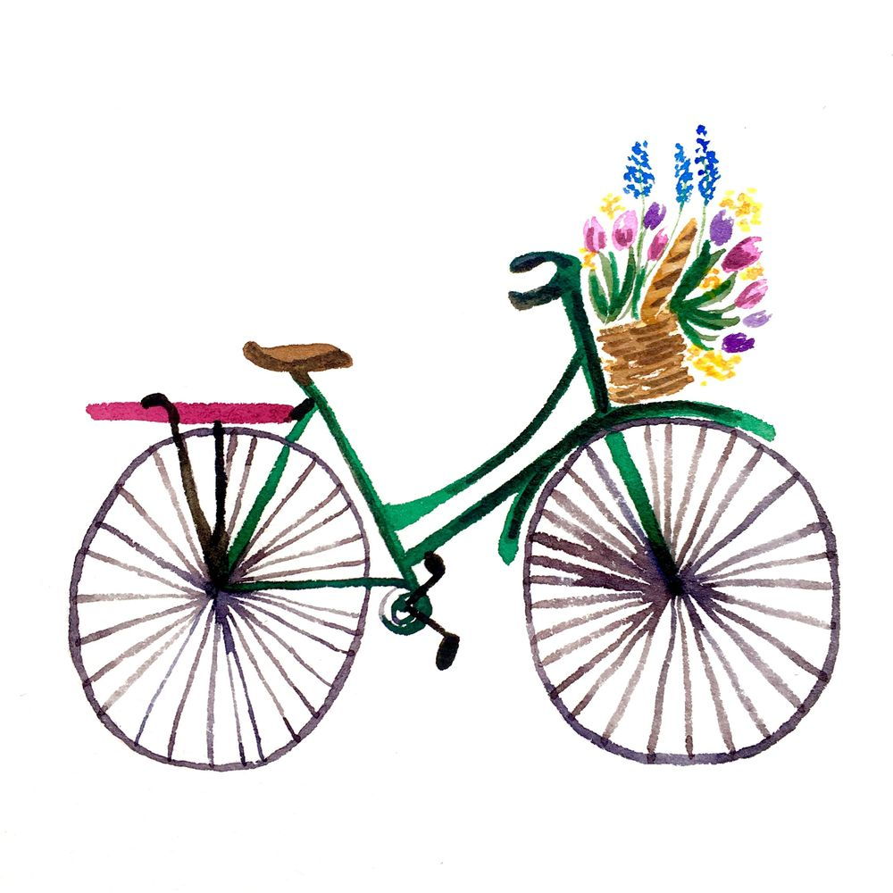 Watercolor Bicycle with Flower Basket - image 2 - student project