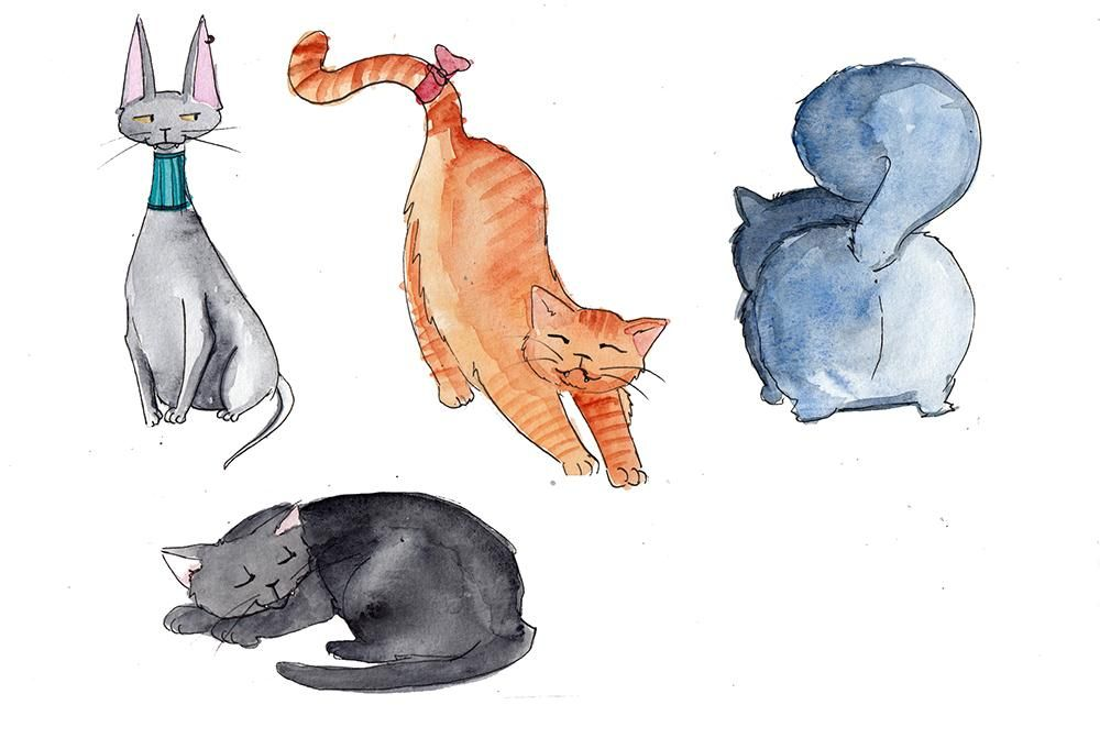 My cute cats - image 6 - student project