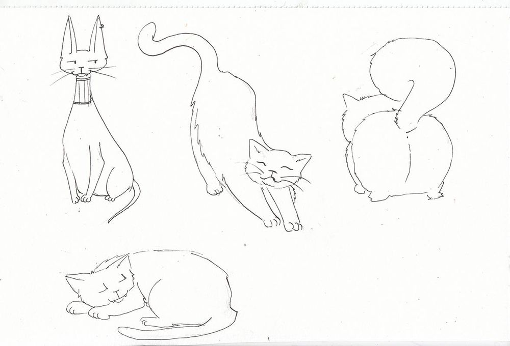 My cute cats - image 5 - student project