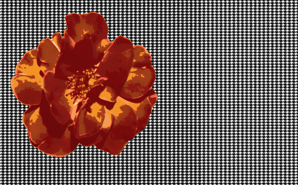 Rose on Houndstooth - image 1 - student project