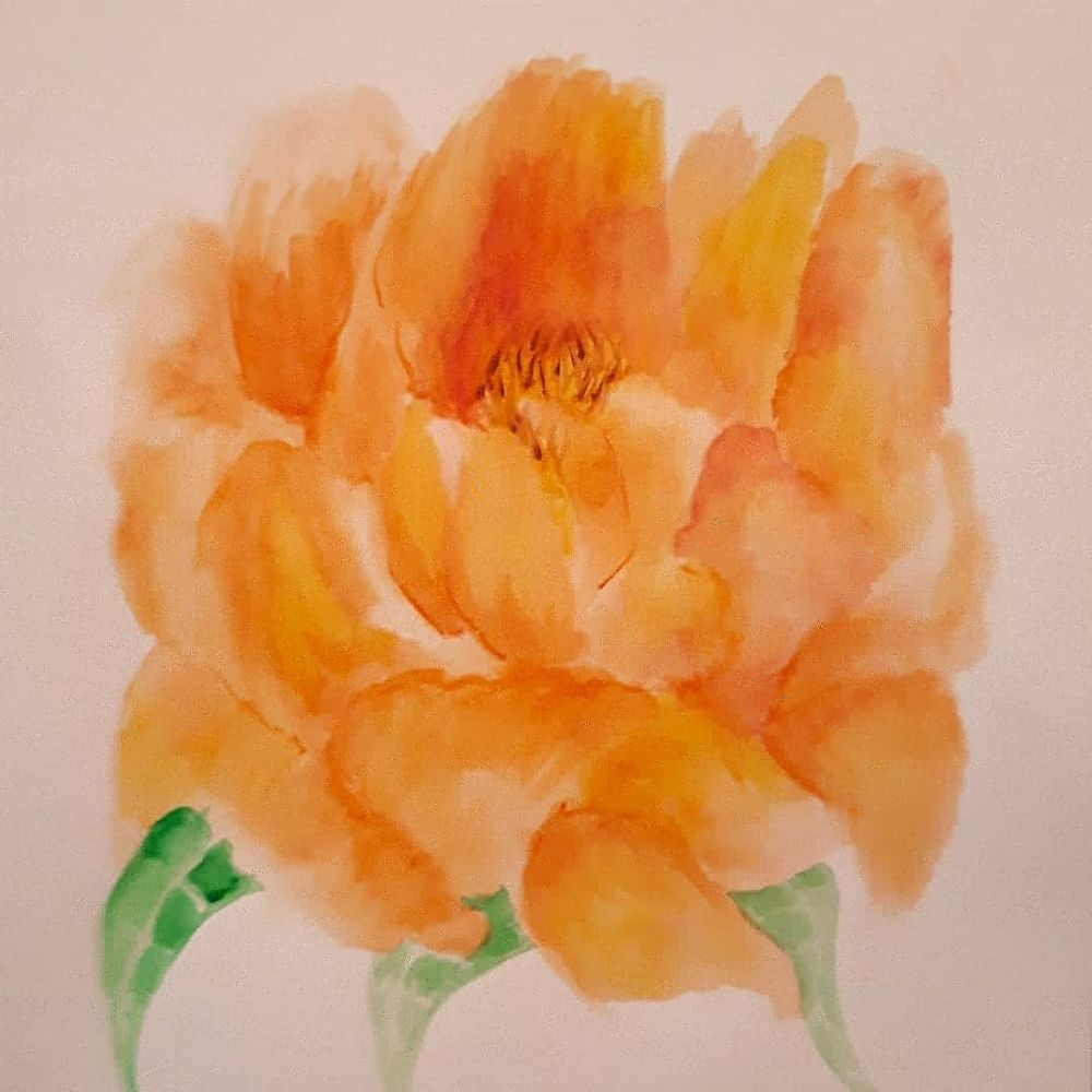 Peonies in full blossom - image 3 - student project