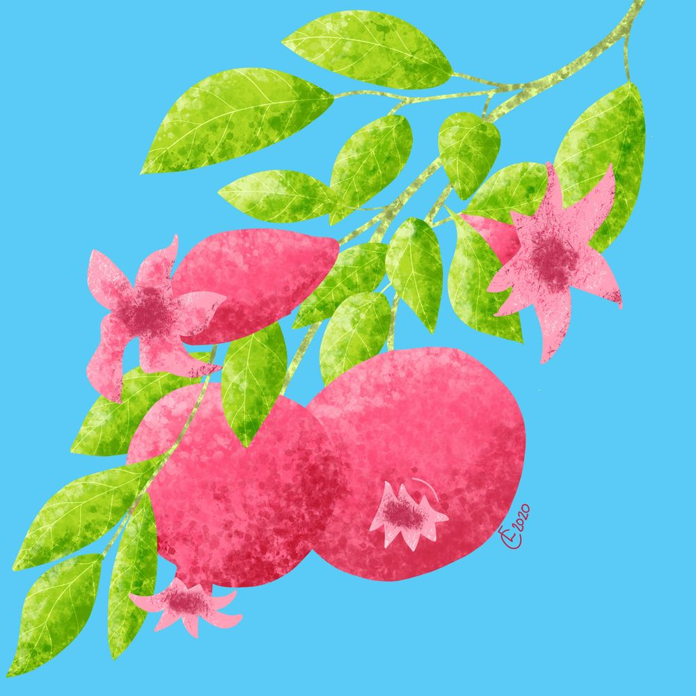 Textured pomegranates - image 1 - student project