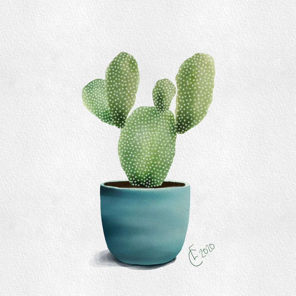 Cacti! - image 2 - student project