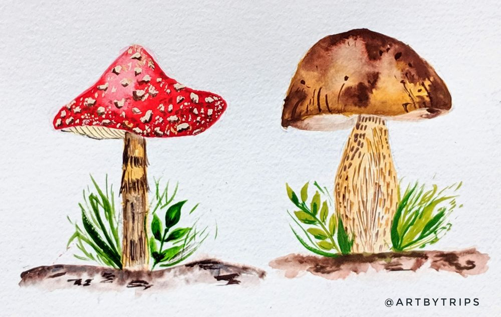 Love Mushrooms :-) - image 7 - student project