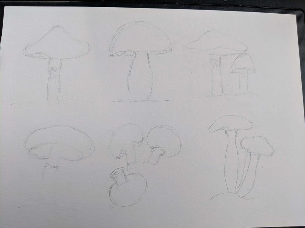 Love Mushrooms :-) - image 1 - student project