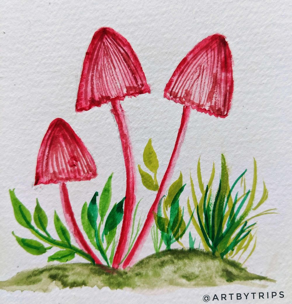 Love Mushrooms :-) - image 6 - student project