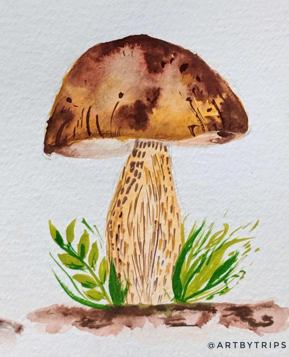 Love Mushrooms :-) - image 5 - student project