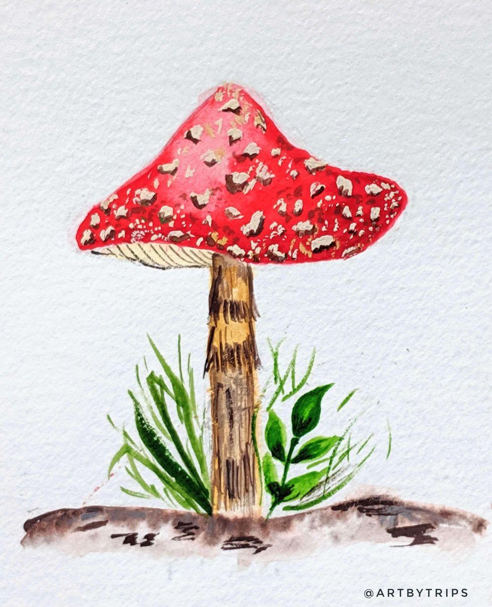 Love Mushrooms :-) - image 4 - student project