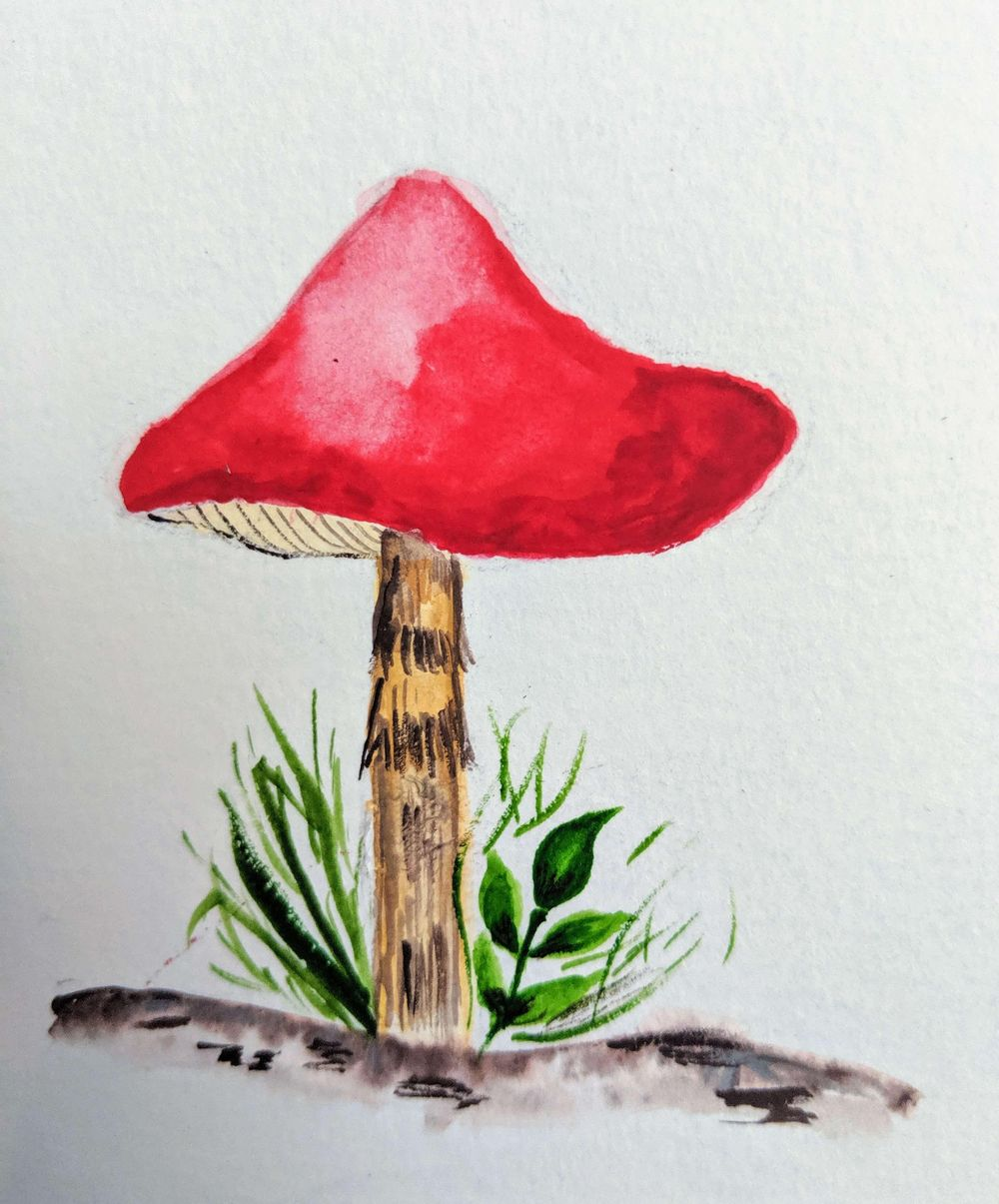 Love Mushrooms :-) - image 3 - student project