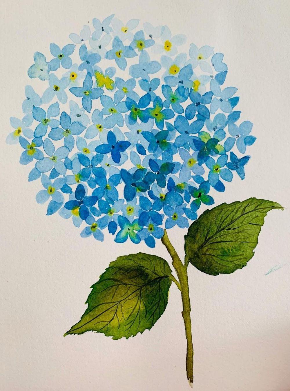 Botanical - image 1 - student project