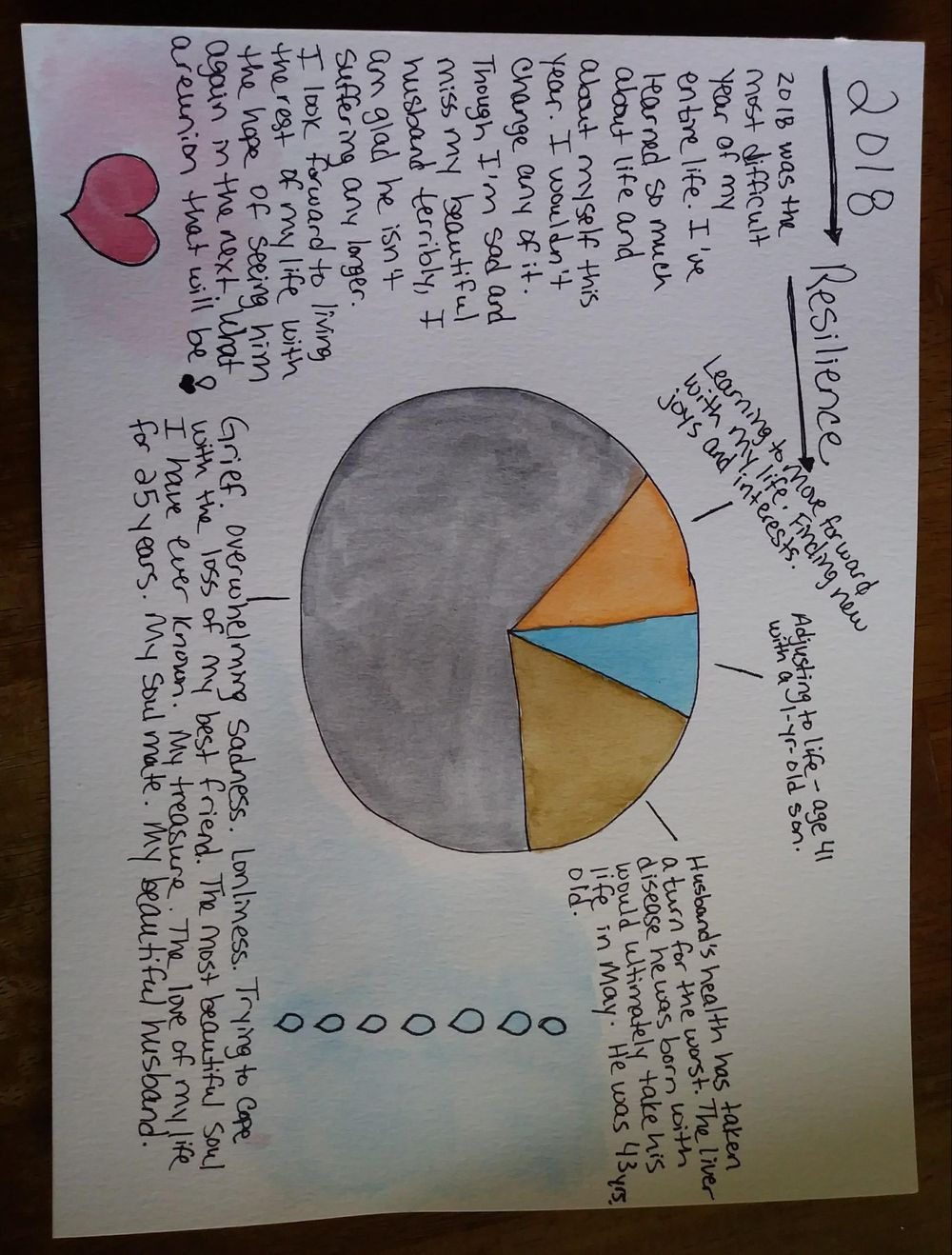 2018 Resilience Pie Chart - image 1 - student project