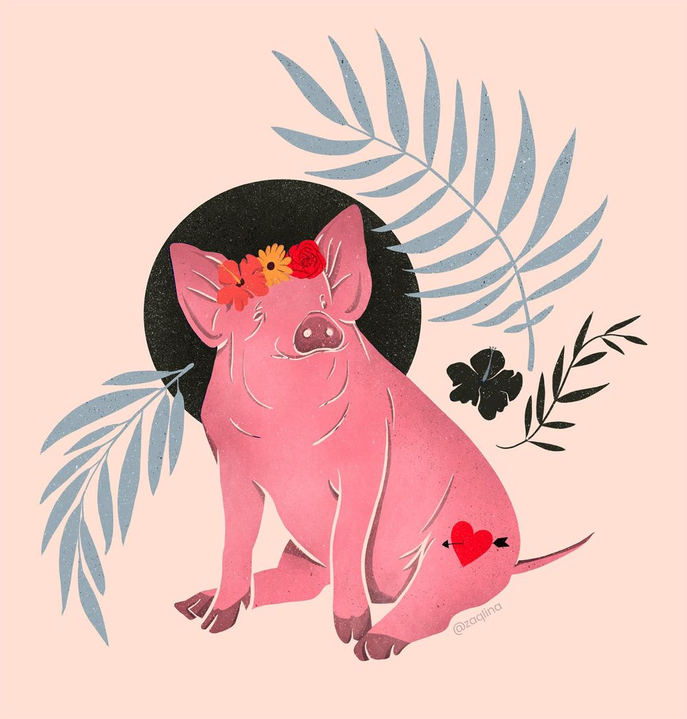 Lady Pig in the tropics - image 2 - student project