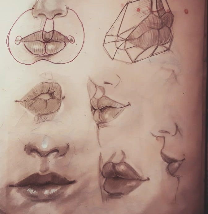 Face Features - image 1 - student project