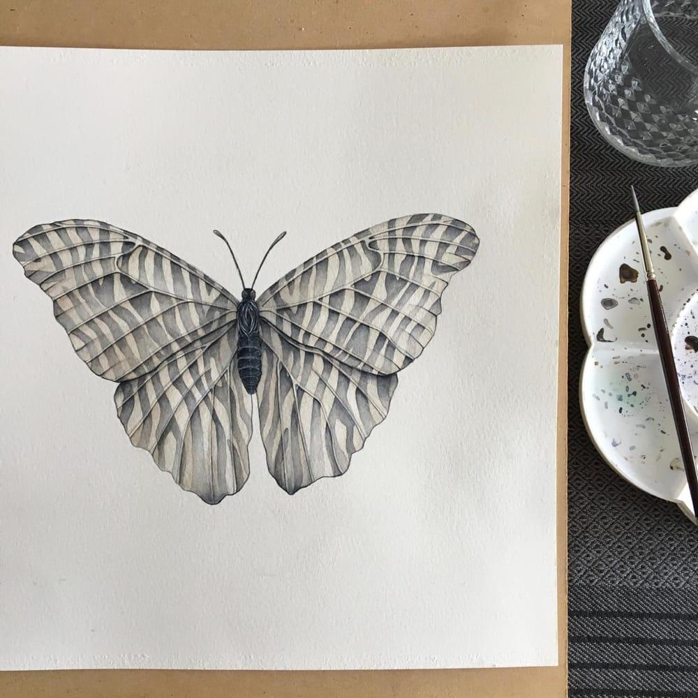 Zebra Butterfly - image 1 - student project