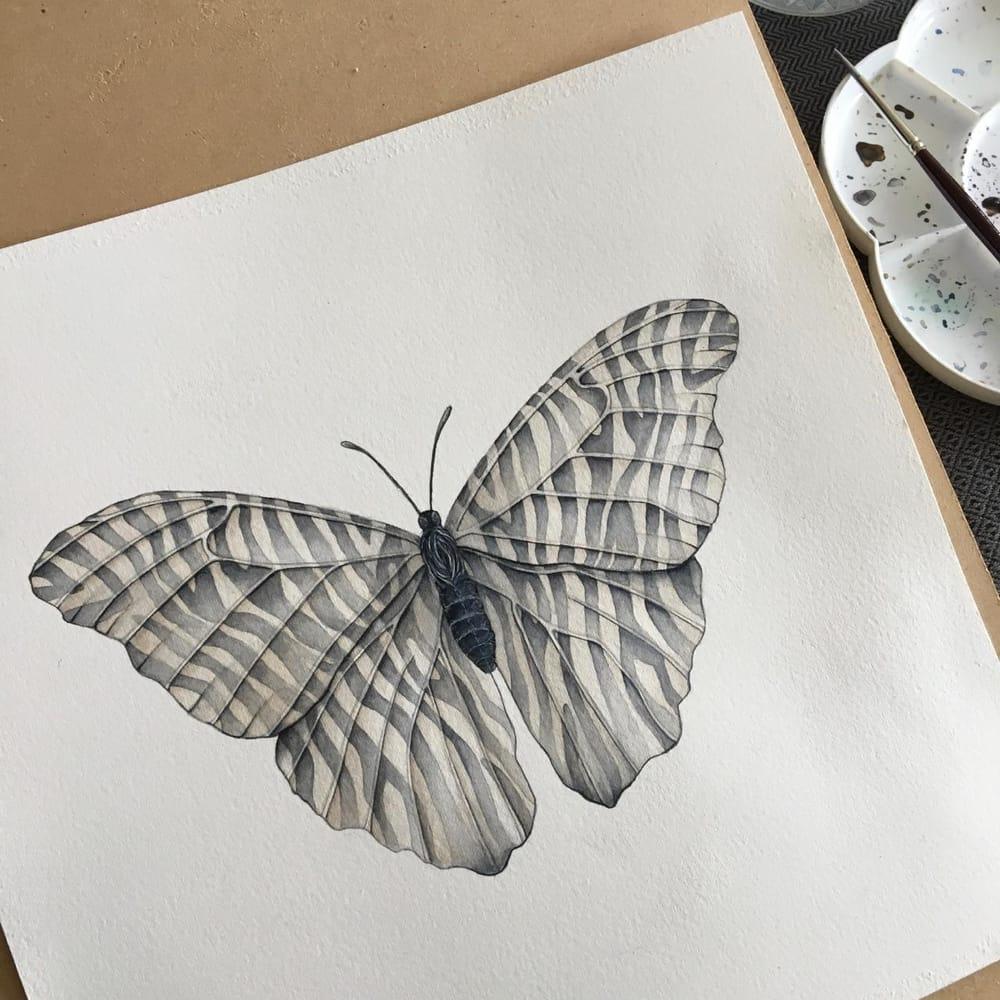 Zebra Butterfly - image 2 - student project