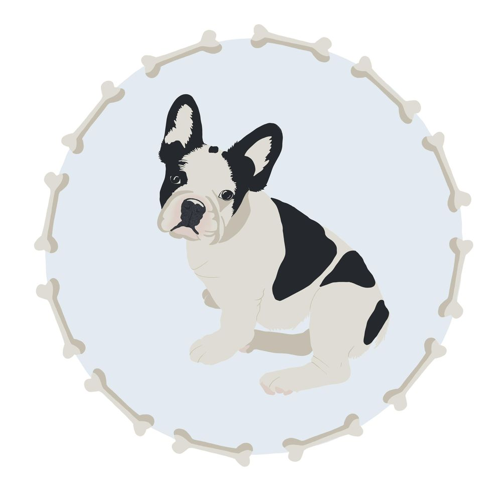 Cute Dog - image 1 - student project