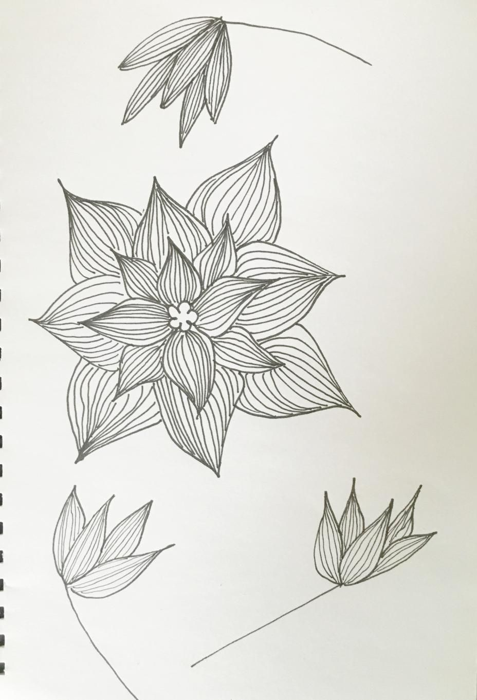 Great activity, definitely will do it again. Perhaps with more regional flowers. - image 2 - student project