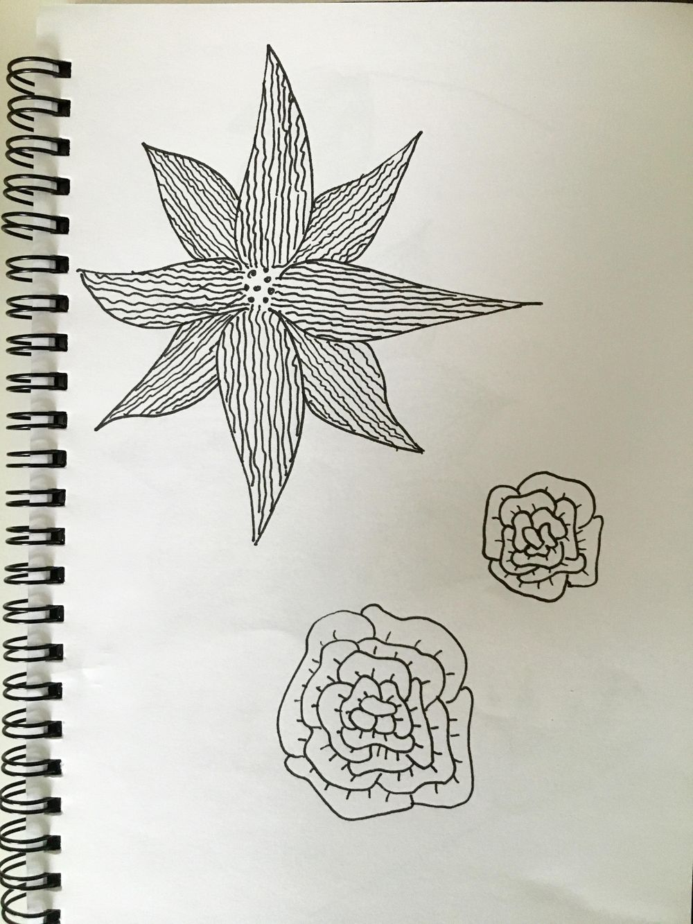 Great activity, definitely will do it again. Perhaps with more regional flowers. - image 1 - student project