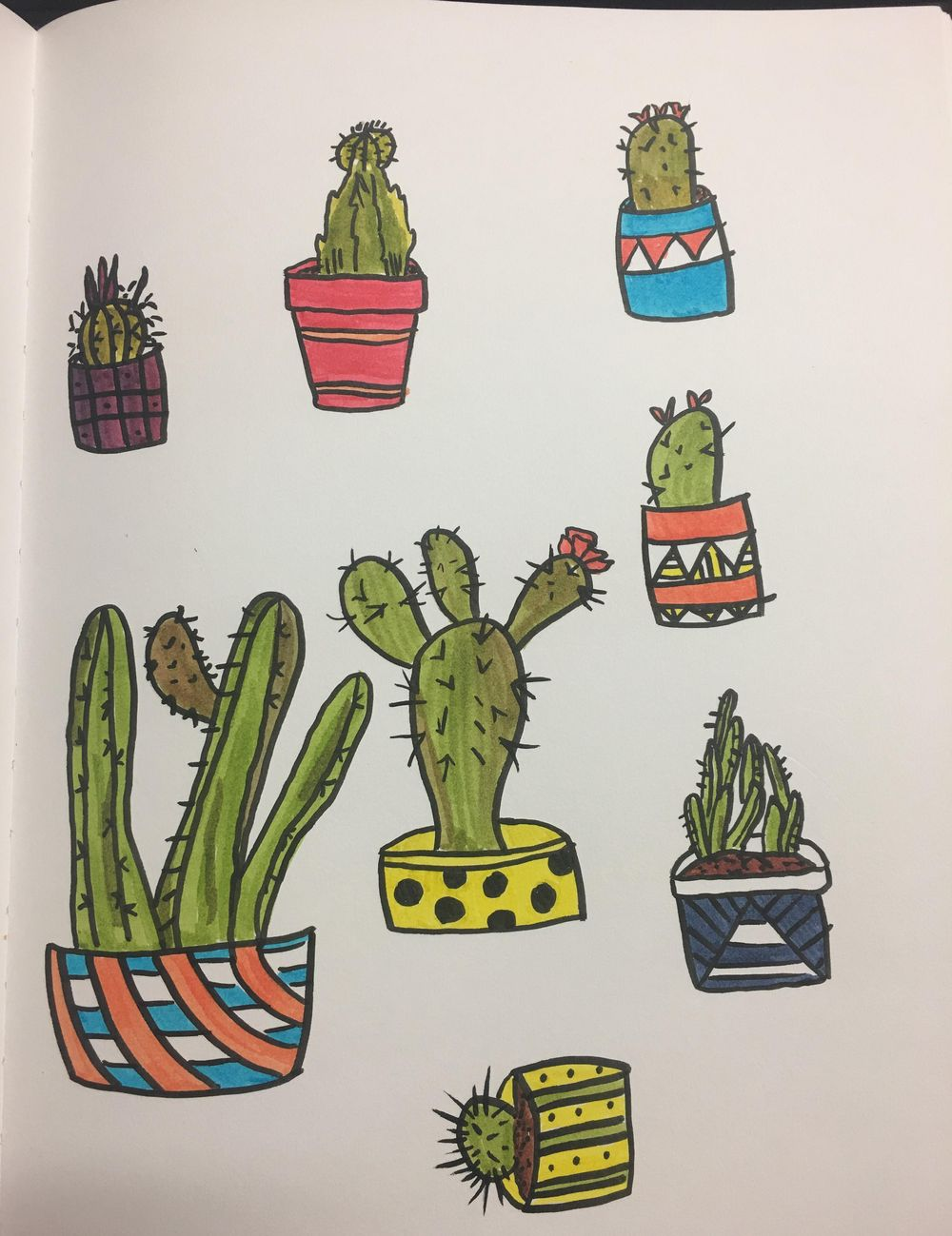 Cacti love - image 2 - student project