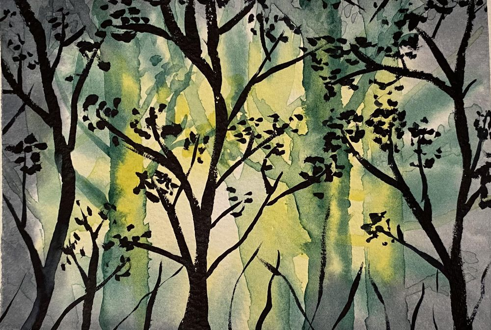 Forest scenes - image 1 - student project