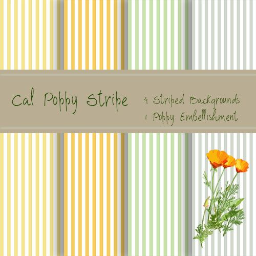 Cal Poppy Stripe - image 1 - student project