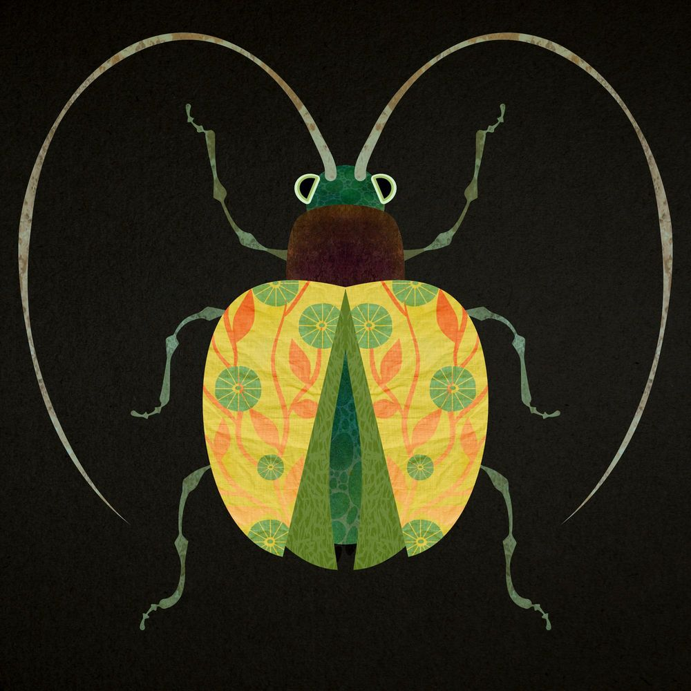 My Bugs - image 2 - student project